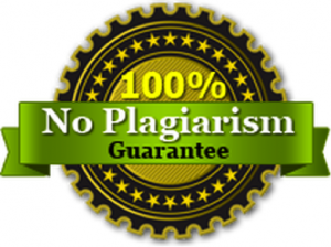 No prlagiarism paper writing service